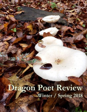 2018 Winter-Spring Issue Dragon Poet Review